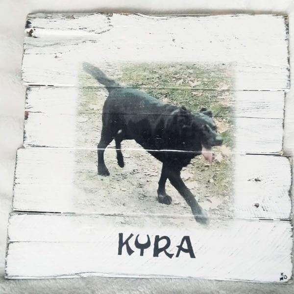 """Deco-bord van pallethout met foto hond """"Kyra"""" , naam eronder geschilderd"""