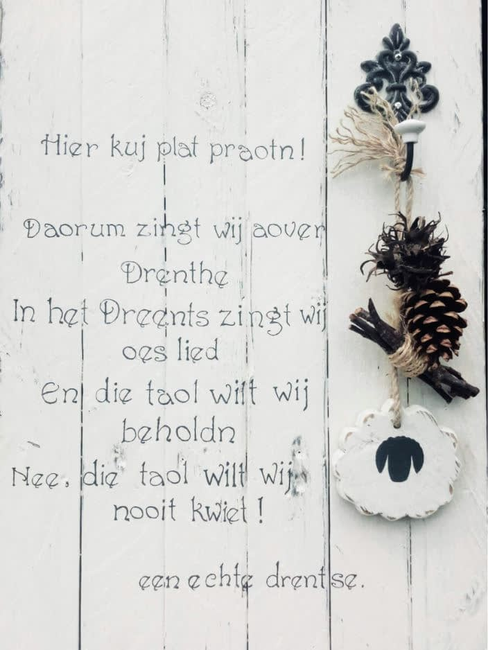 """Deco-bord """"Hier kuj Drents proat'n"""" met plantenbak"""