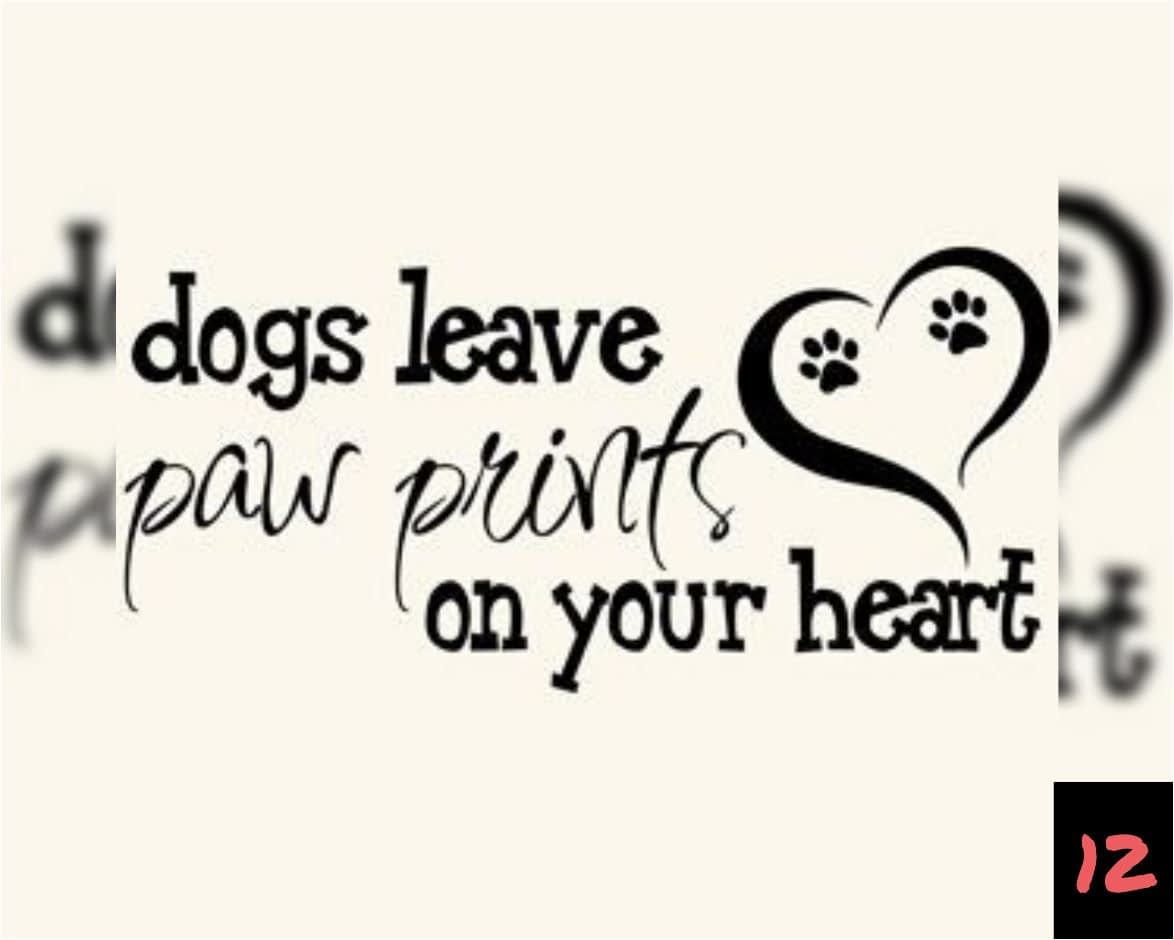 Teksten 12 - Dogs leave paw prints on your heart