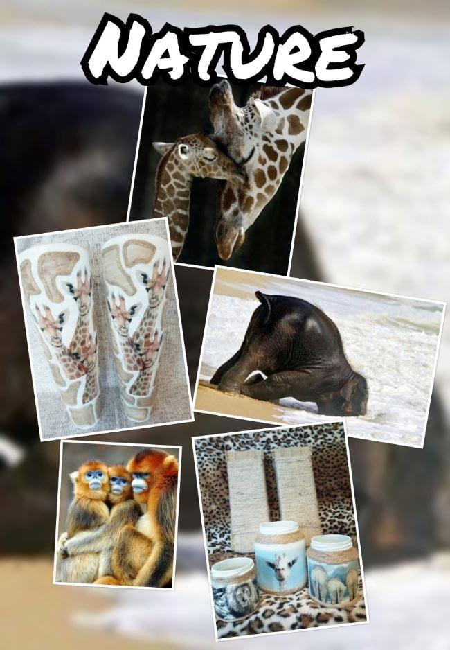Nature-collectie staat in het teken van de natuur. Gebruik van natuurlijke materialen.