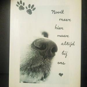 Herinnering - Hond (Memories)