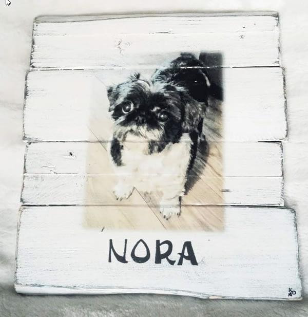 """Deco-bord van Palletrhout met foto hond """"Nora"""" , naam eronder geschilderd"""