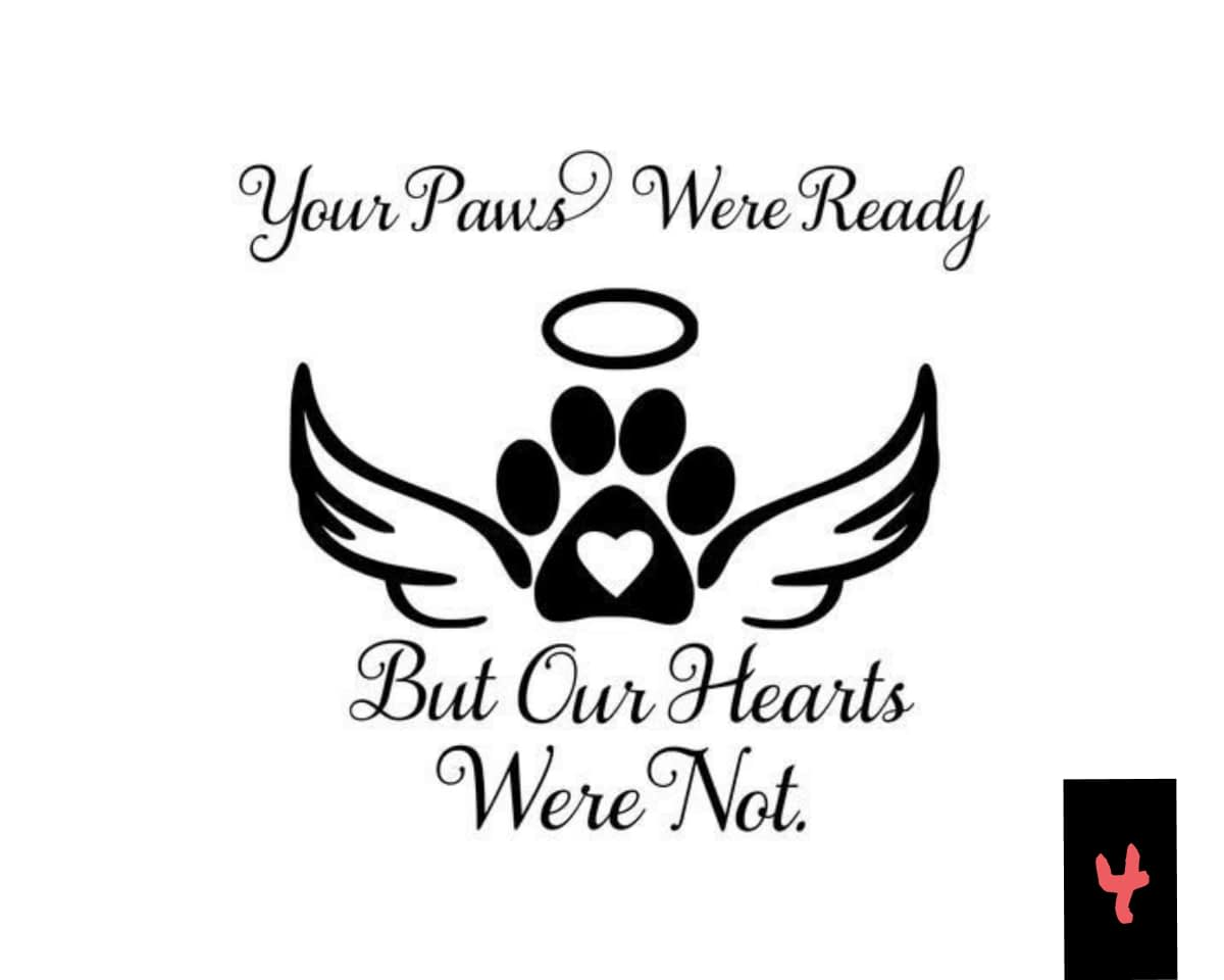 Teksten 04 - Paws ready-Hearts not