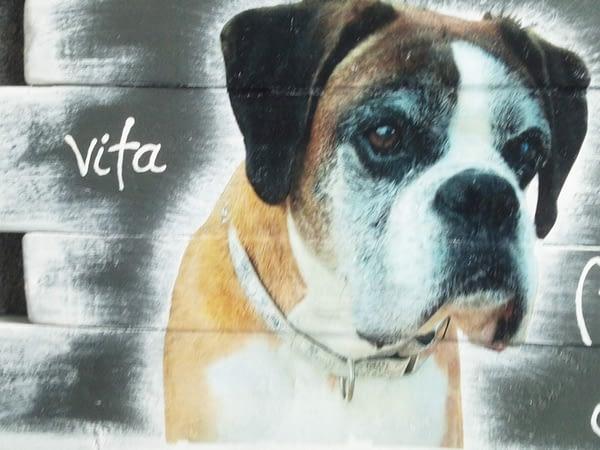 Memories - Hond Vita string-art