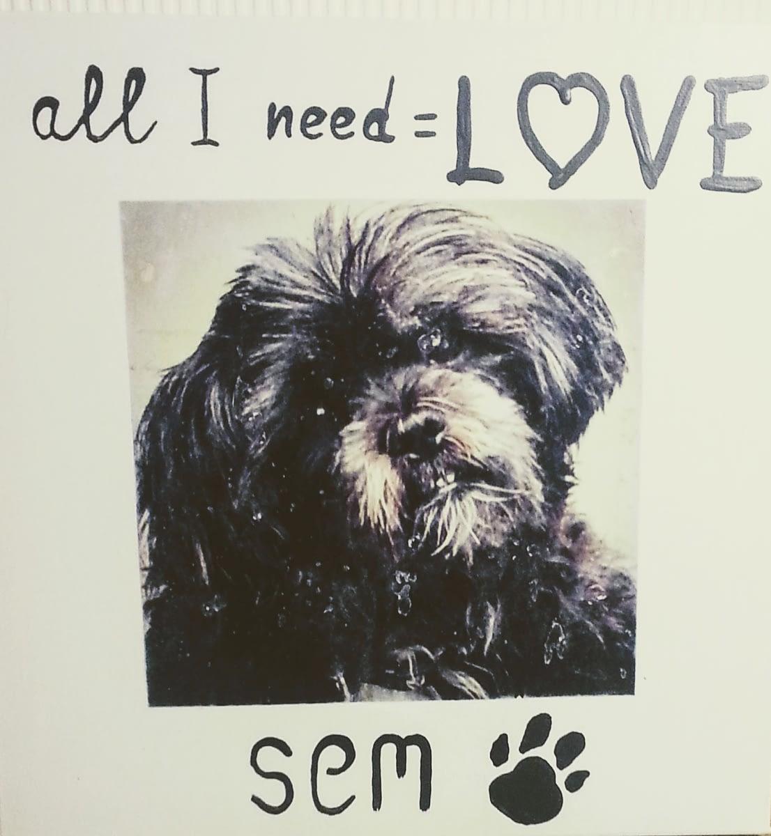 Foto hond op canvas met tekst