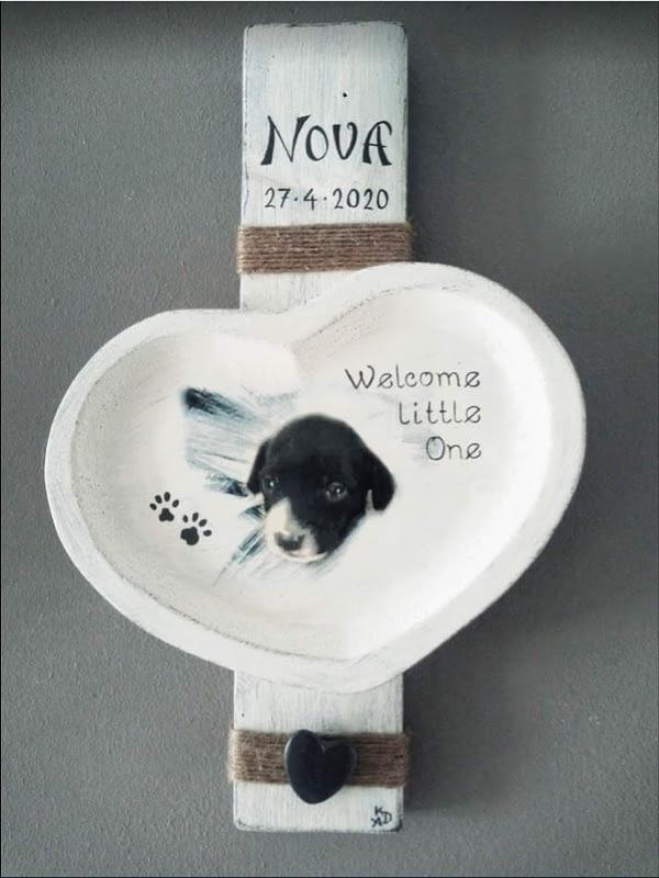 """Geboorte bordje voor puppy """"Nova"""" voorzien van foto, naam en datum, gemaakt van pallethout."""