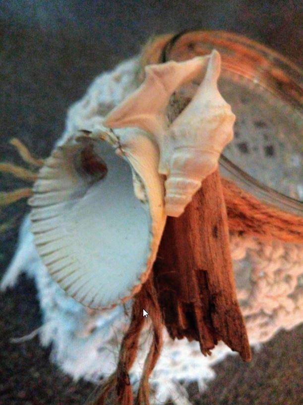 Beach House - Duo windlicht macramé met schelpen en drijfhout