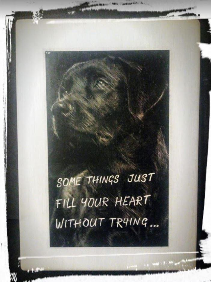 """Bord met foto van overleden huisdier en gedicht. """"Some things"""""""