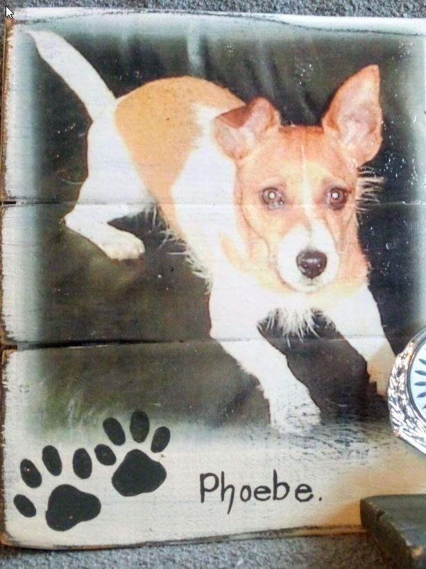 "Herinneringsbord ""Phoebe"" met foto, gedicht en tandje verwerkt."