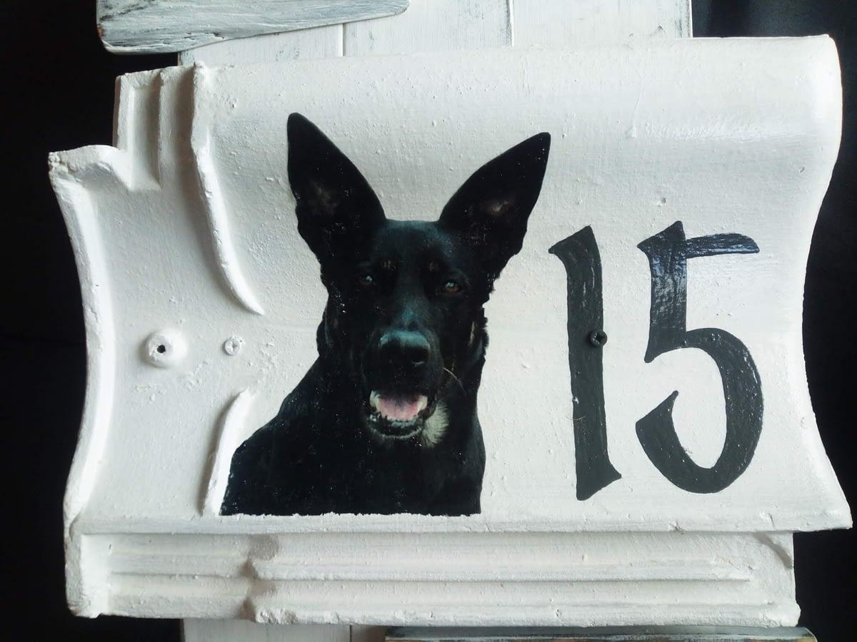 Huisnummerbord 15 - dakpan - hout met foto en tekst