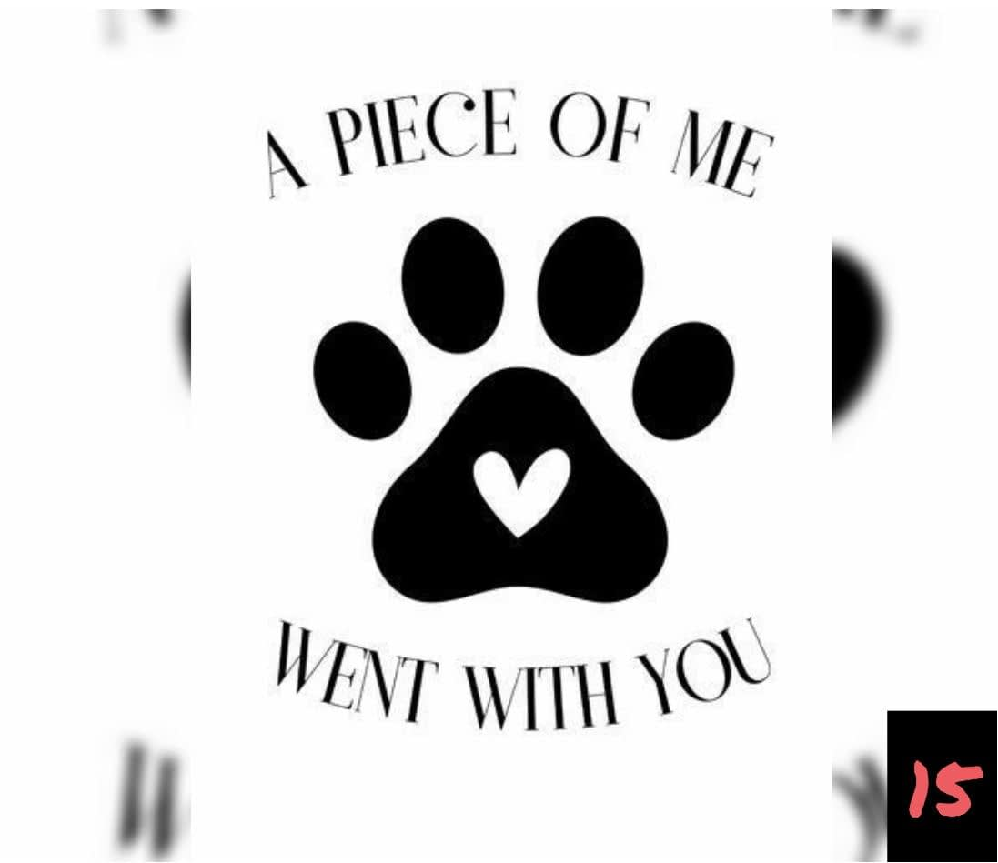 Teksten 15 - A piece of me went with you