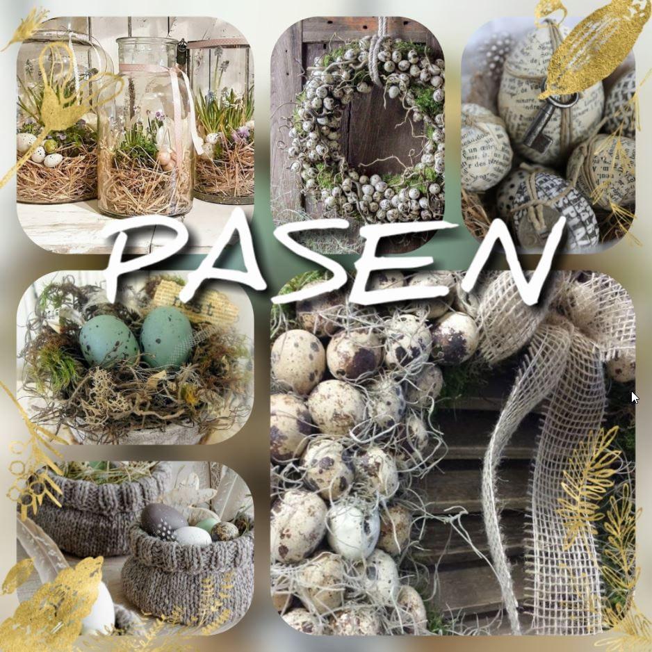 Home - Pasen