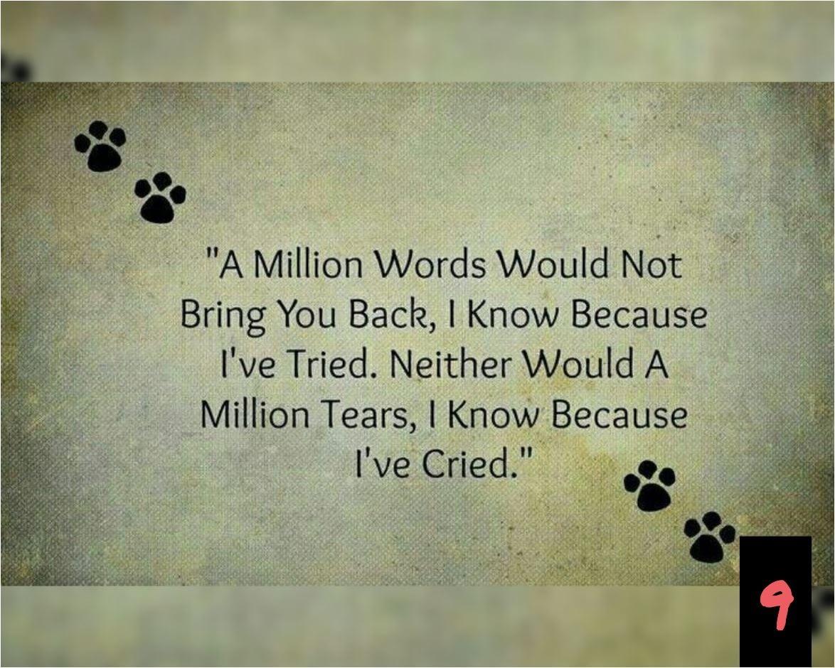 Teksten 09 - Million words-million tears