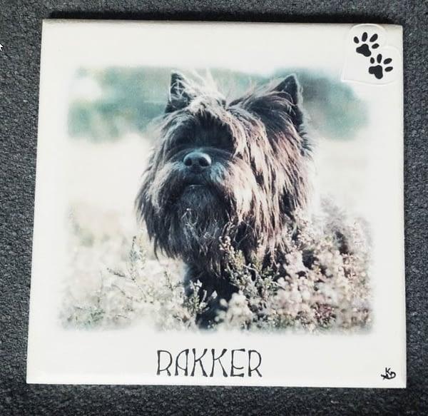 Foto van Rakker op MDF met naam hartje en hondenpootje erop geschilderd